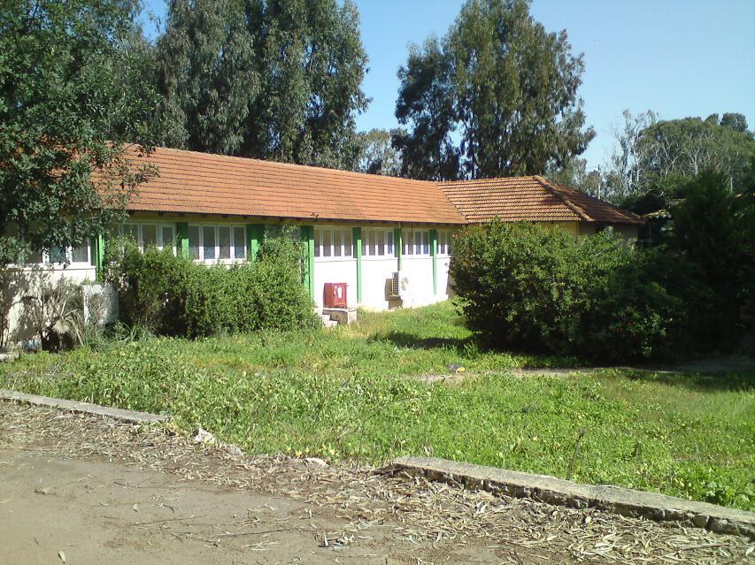 39-kindergarten